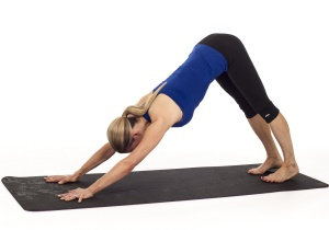 pes-tavrou-dolu-joga-pozicia-flexity