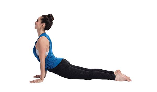 pes-tvarouhore-joga-pozicia-flexity